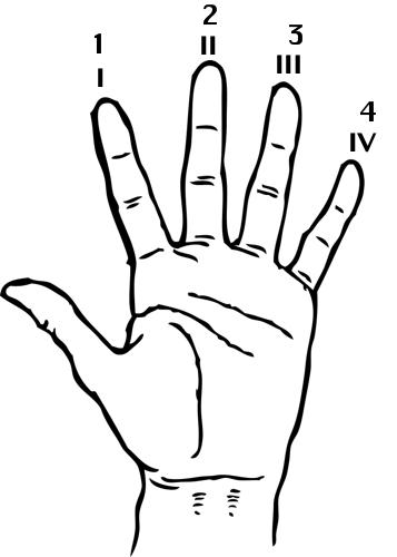 erhu left_hand